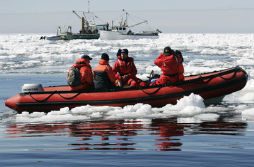 Observers on an HSUS boat watch two sealing boats during the first day of the seal hunt in the Gulf of St. Lawrence
