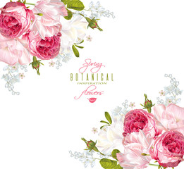 Vector corner banner with garden roses and tulip flowers on white background. Romantic design for natural cosmetics, perfume, women products. Can be used as greeting card or wedding invitation