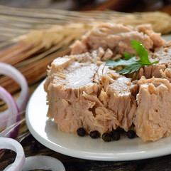 Canned tuna fish in plate