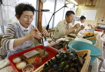 Takayo Iwaki and her husband and son plant nucleus in Japanese akoya shells in Shima, western Japan