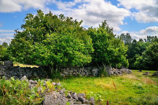 Natursteinmauer aus Findlingen Feldsteinen, Vassemåla, , Vimmerby, Kalmar län, Smaland, Schweden