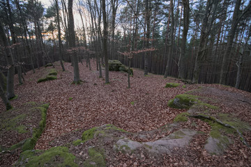 Castle Ruin Wartstein near Hilpoltstein, Bavaria, Germany
