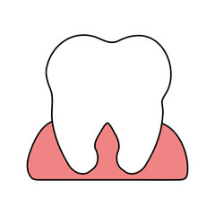 color silhouette cartoon gum and front view tooth vector illustration