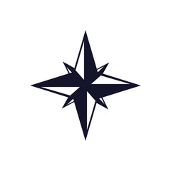 navigation star icon over white background. vector illustration