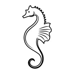 sea horse icon over white background. vector illustration