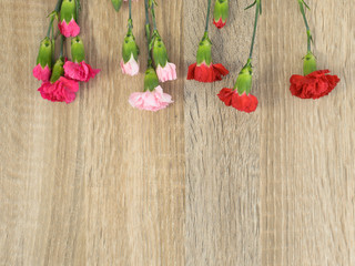 Flowers lie on a wooden surface and place for text.