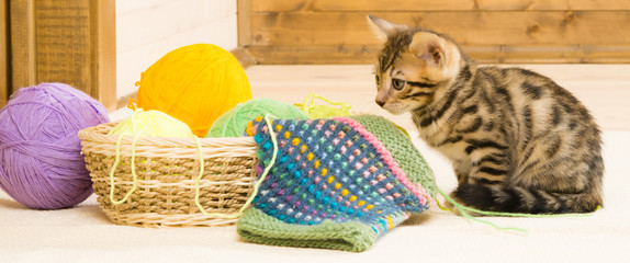 Basket with balls for kitten on a wooden background