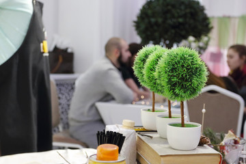 Three small artificial trees, natural cones are on table, people out of focus