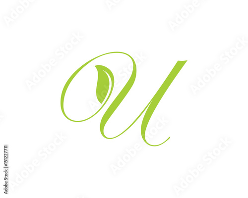 leaf and script letter u stock image and royalty free vector files