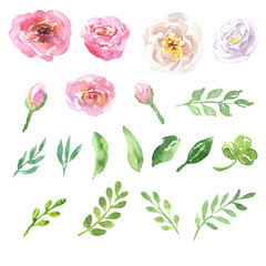 Beautiful natural hand drawn watercolor floral set with pink, white and purple flowers, leaves and brunch, isolated on white background. Botanical sketch clip art illustration.