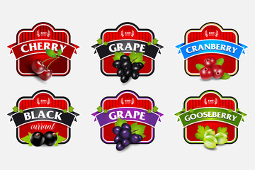 Organic berries labels collection with gooseberry grape cranberry black currant cherry for package design isolated vector illustration