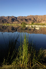 Morning on Orange river