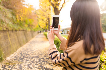 Woman taking cellphone in the park with autumn ginkgo tree