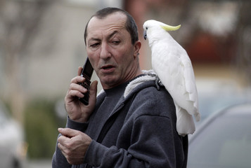 A man who gave only his first name as Hamlet talks on his phone with his parrot on his shoulder in Little Armenia, in Los Angeles