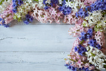 Colored hyacinths on a wooden background
