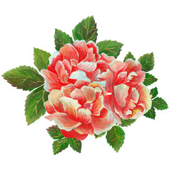 Hand painted watercolor bouquet combination of Flowers and Leaves, greeting card, Isolated on white background