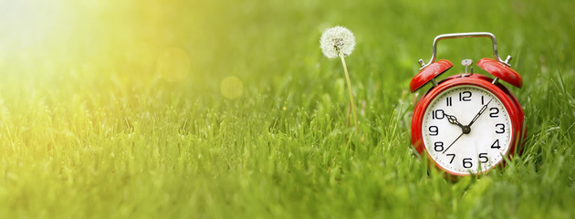 Summer time concept - website banner of a red alarm clock and dandelion flower