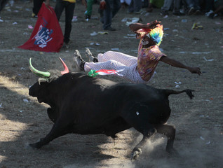 A spectator jumps on a bull during a traditional Corraleja or bullfight in Sincelejo