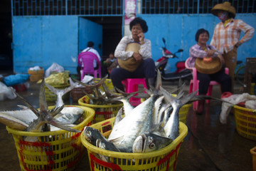 Women sell fish wholesale at a port in the city of Dongfang on the western side of China's island province of Hainan
