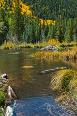 Beaver Pond and Lodge in Autumn