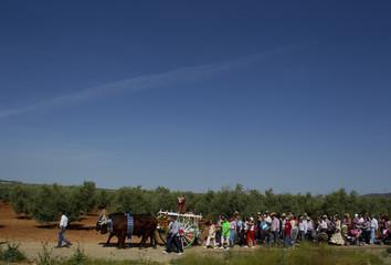 Pilgrims make their way to the shrine of Saint Pancras during Saint Pancras pilgrimage in La Roda de Andalucia