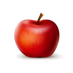 Red apple. Isolated vector illustration.