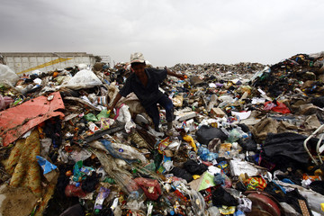 A boy looks through garbage to be sorted and sold to nearby recycling centres in a district near Najaf