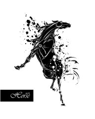 Horse in sketch-style. Vector illustration with blots and splash