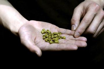 File photo of hop pellets in Beijing