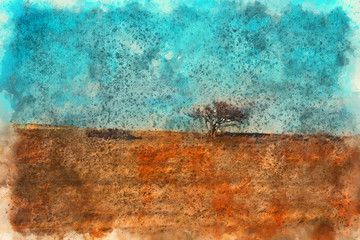 Orange desert Landscape and tree, Georgia. Painting watercolor., Georgia. Painting watercolor.
