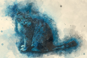 Thoughtful cat. Painting watercolor.