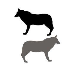 Wolf vector illustration  black silhouette