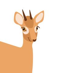 little baby deer  vector illustration style Flat cartoon