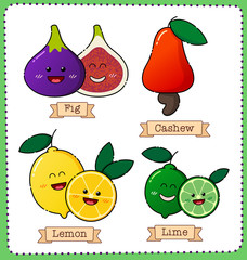 colorful fruit illustration for various use