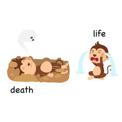 Opposite words death and life vector