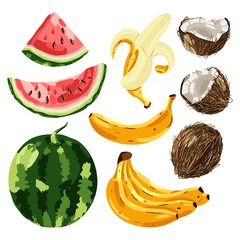 Set of exotic fruit. Vector