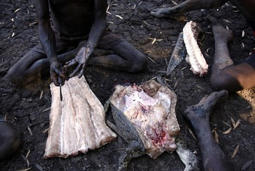 Australian Aboriginal hunter Roy Gaykamangu sits by a billabong and cuts up a crocodile he just shot dead near the 'out station' of Yathalamarra, located on the outksirts of the community of Ramingining in East Arnhem Land