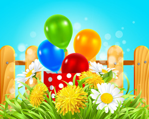 box with balloons in the grass with daisies and dandelions