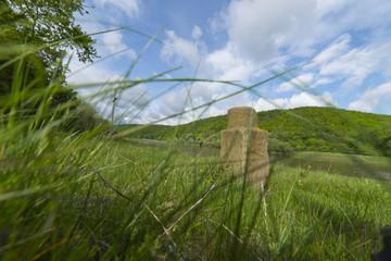Ancient border pillar