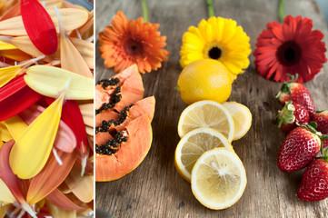 Diptych, still-life, macro-petals of gerbera, papaya, lemon, strawberry, yellow, orange and red gerbera