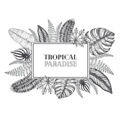 Tropical palm leaves design template. Vector illustration leaves of palm. Wedding invitation vintage card. Botanical vector illustration