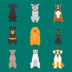 Funny cartoon dog character bread cartoon puppy friendly adorable canine vector illustration.