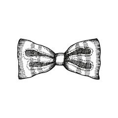Bow vector illustration