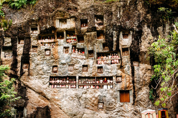 Old torajan burial site in Lemo, Tana Toraja. The cemetery with coffins placed in caves carved into the rock and balconies with dressed wooden statues tau tau. Rantapao, Sulawesi, Indonesia