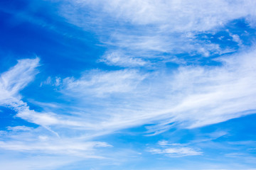 cloud and sky blue summer high background