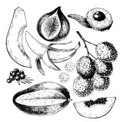 Vector hand drawn exotic fruits. Engraved smoothie bowl ingredients. Tropical sweet food. Papaya, fig, lychee, acai, mango.
