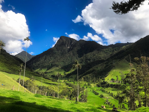 Peaceful Colombia