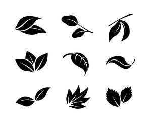 Set of black simple vector leaves icons isolated on white background