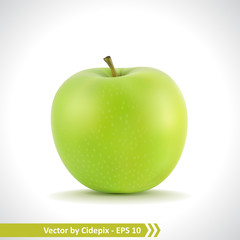 Realistic Illustration of a Green Apple