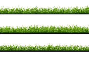 Vector realistic isolated green grass borders with dew on the white background for decoration.